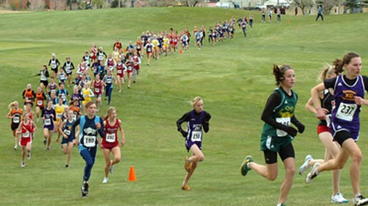 Image result for Cross country runner